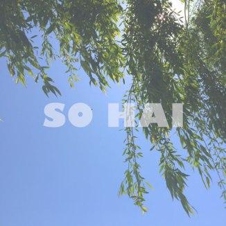 sohai